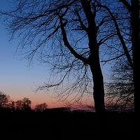 Ausschnitt von: Abends südlich der Elbe