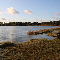 Ausschnitt von: Herbsthochwasser an der Schlei