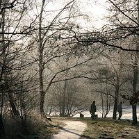 Ausschnitt von: Spaziergang im Winter